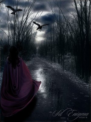 Into_The_Night_by_sil-enigma